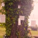 tenuta-di-polline-gallery-matrimoni-eventi-10
