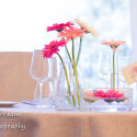 tenuta-di-polline-gallery-nostro-stile-03